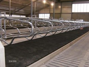 Beerepoot polylatex matras met 4 mm topmat